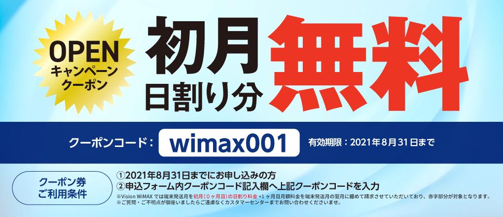 vision wimax 初月無料